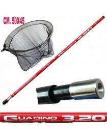 Manico Guadino Metri 3,20 Con Filettatura Testa Rete Idro