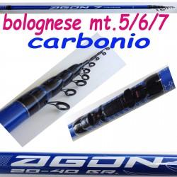 Canna Da Pesca Bolognese In...